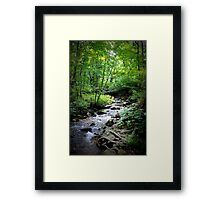 Thornton River, Buck Hollow Framed Print