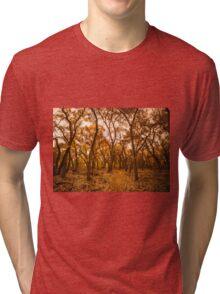 Golden Fall Tri-blend T-Shirt