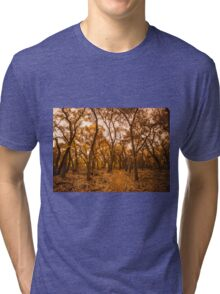 Golden Fall Tri-blend T-Shirt