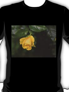 Even the Gloomiest Day Brings Beauty and Joy T-Shirt
