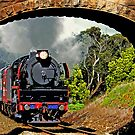 Under Steam by Andrew S