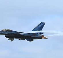 F-16 Fighting Falcon by DutchLumix