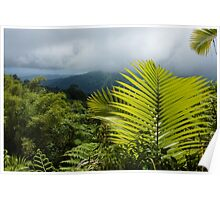 Tropical Rainforest - Jungle Green and Rain Clouds Poster