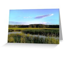 Cheesequake Park, New Jersey Greeting Card