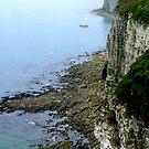 Bempton Cliffs  -  East Yorkshire by Trevor Kersley