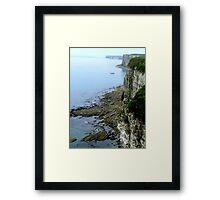 Bempton Cliffs  -  East Yorkshire Framed Print
