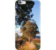 Barossa Valley Autumn Sunshine iPhone Case/Skin