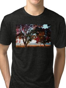 Autumn Sunrise in the Barossa Tri-blend T-Shirt