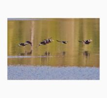 Hooded Mergansers Take Off 3 - Harles couronnés - Parc National Mont Tremblant  Kids Tee
