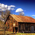 An old barn in Williams, Arizona by Mike Olbinski