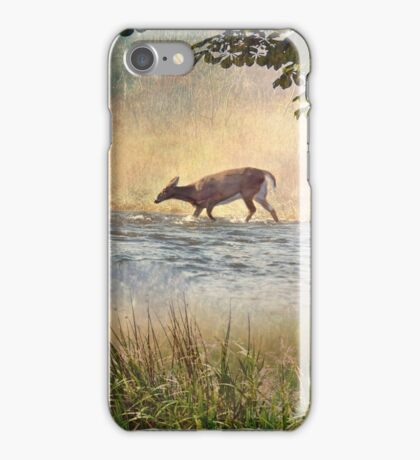White Tail Deer Touting the Water - Parc National Mont Tremblant iPhone Case/Skin