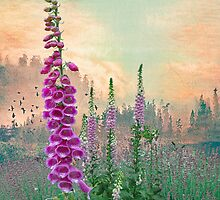 Foxglove in Washington State by Jeff Burgess