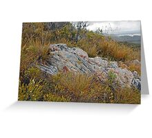 Bush Sculpture Greeting Card