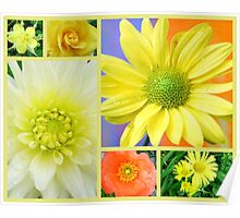 Yellow Flower Collage Poster