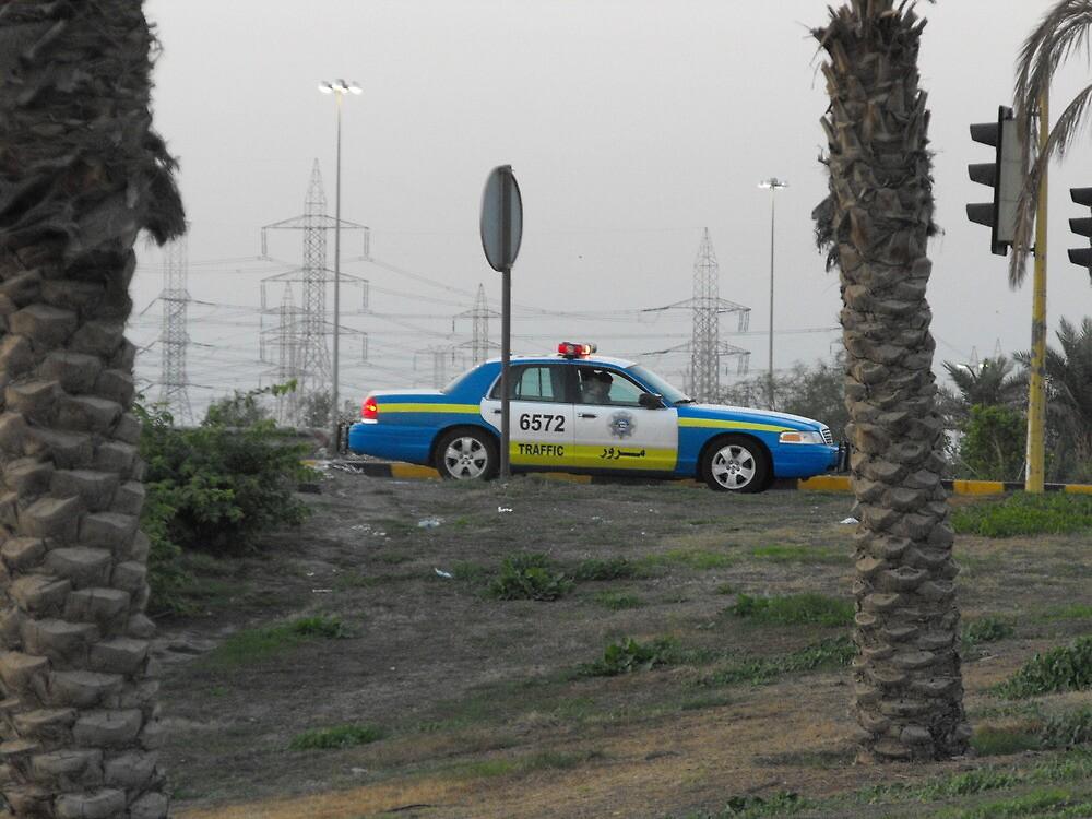 Traffic Duty in the Kuwaiti Desert by Howard Lorenz
