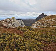 Rugged Terrain_Cradle Mountain by Sharon Kavanagh