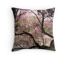 Cherry Blossom from the Palatine Hill Throw Pillow