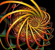 Spinning Wheel by Julie Everhart