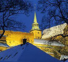 Akershus Castle by Kasia Nowak