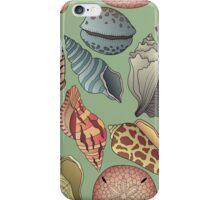 Vintage Seashell Pattern Seamless iPhone Case/Skin
