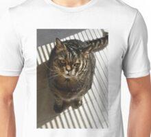 Blinds on stripes Unisex T-Shirt