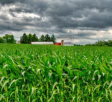 Wisconsin Dairyland by ECH52