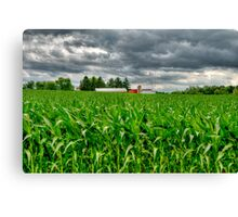 Wisconsin Dairyland Canvas Print