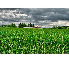 Wisconsin Dairyland Photographic Print