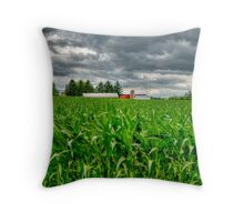 Wisconsin Dairyland Throw Pillow