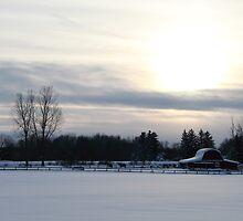 Farm Winter Wonderland by AmandaKopcic