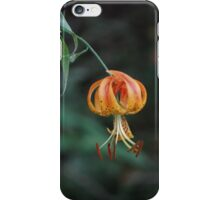 Turk's Cap is back in town iPhone Case/Skin