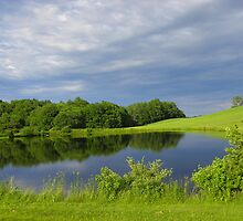 Small Pond on Hill Road in Arundel, Maine by MaryinMaine