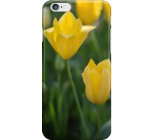 Yellow Crown Tulips iPhone Case/Skin