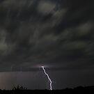 Backyard Light by Dennis Jones - CameraView