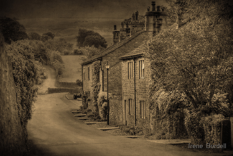 Cottages at Downham  by Irene  Burdell