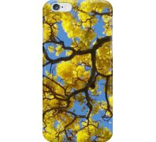Hawaiian Flame Blossoms iPhone Case/Skin