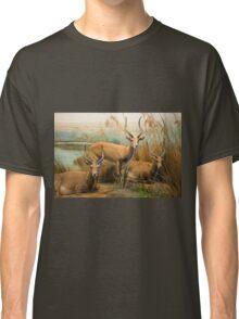 African Impalas Classic T-Shirt