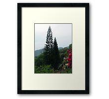 Chiang Mai 11 Framed Print