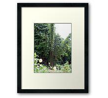 Chiang Mai 12 Framed Print