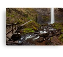 Latourell Falls ~ The Trail to White Ribbon Canvas Print