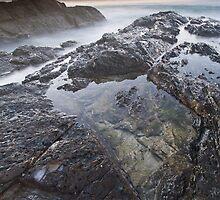 Seas of Mist & Moss by Jason Asher