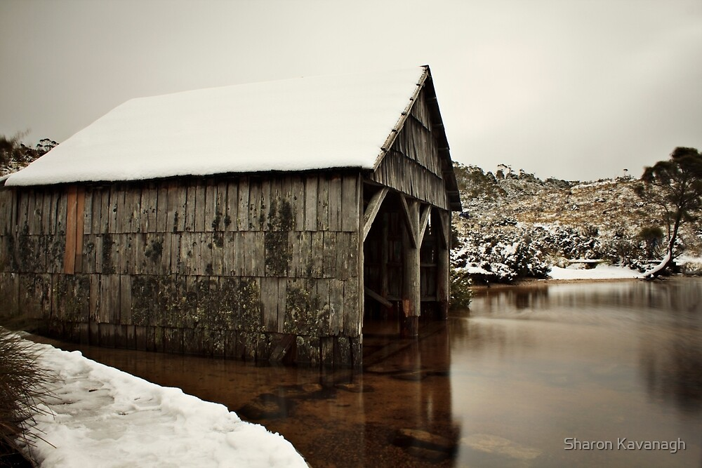 Snow Day_Cradle Mountain by Sharon Kavanagh