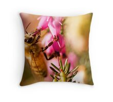 My Own Insect Model, Part II Throw Pillow