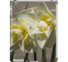 Pastel Yellow Spring - a Pair of Double Daffodils iPad Case/Skin
