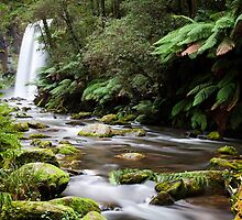 Hopetoun Falls by Darryl Leach