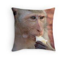 Wild monkey feeding Throw Pillow