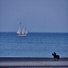 Land & Sea by Jamie Lee