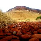 Pilbara Tabletop by Ngarluma78
