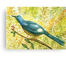 Earthy blue white Squire bird Canvas Print