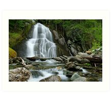 Moss Glen Falls - Midstream Art Print